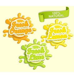 Set of Lemon orange lime juece labels splash vector image