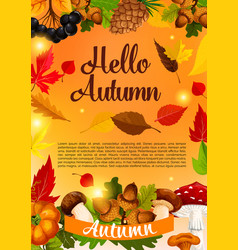 hello autumn poster template of fall season leaf vector image vector image