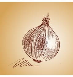 Background sketch onion vector