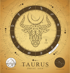 Card with astrology taurus polygon zodiac sign vector