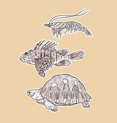 Set animal hand draw sketch vector