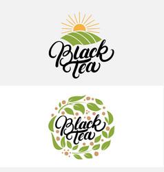 set black tea hand written lettering logos vector image