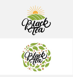 Set of black tea hand written lettering logos vector