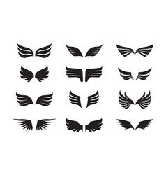 wing feather set winged one is black the vector image