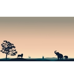 Silhouette of animals elephant lion vector image