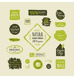 Set of organic food labels and design elements vector image