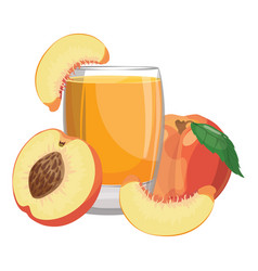 a glass fresh peach juice vitamin refreshing vector image