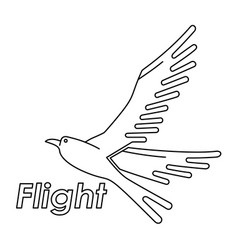 bird logo line art vector image