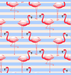 flamingo exotic bird striped seamless pattern vector image