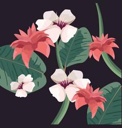 flowers bloom floral botanical decoration vector image
