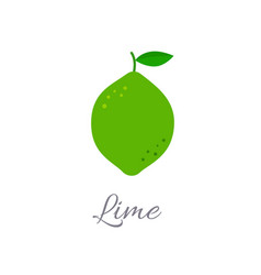 Lime icon with title vector
