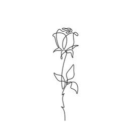 rose flower in simple minimal vector image