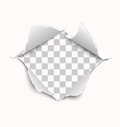 Snatched middle white paper with torn edges vector