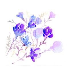 Watercolors colorful flowers vector