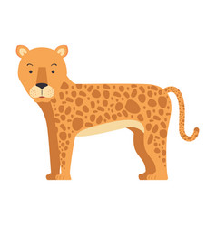 Wild leopard isolated icon vector