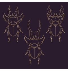 Set of horned beetles in line style design vector