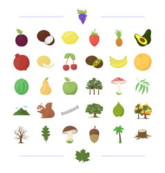 ecology vitamins fruit and other web icon in vector image
