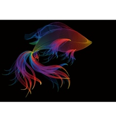 Abstract background with rainbow goldfish vector