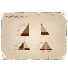 Detail of population pyramids graphs depend on old vector