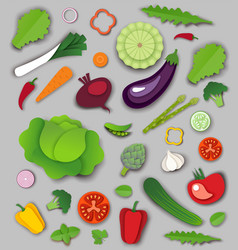 paper cut craft style fresh vegetables and vector image