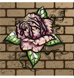 Rose on the wall vector image