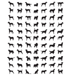 silhouettes dogs vector image