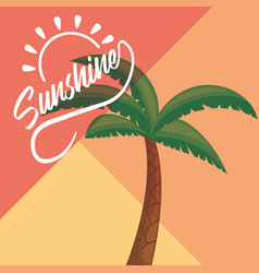 sunshine design concept vector image