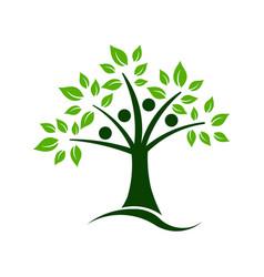 tree teamwork vector image vector image