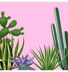 Background with cactuses and succulents set vector image