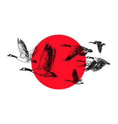 flying flock of wild geese on a red sun background vector image