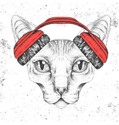 Hipster animal sphynx cat with headphones vector