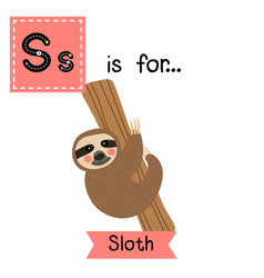 Letter s tracing sloth hanging on tree vector