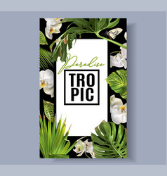 Tropic orchid frame vector