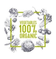Retro organic food background vector image