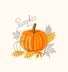an orange big pumpkin with autumn leaves vector image