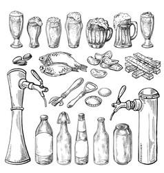 beer tower hops mug and glass vector image
