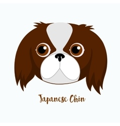 dog Japanese chin vector image
