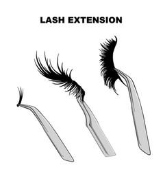 Eyelash types false eyelashes extension procedure vector