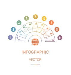 infographic template colourful pie chart vector image