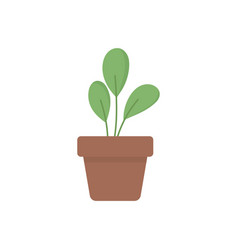 potted plant decoration interior icon vector image
