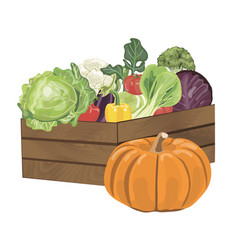 Wooden box with vegetables vector
