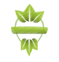 drawing green leaves natural label vector image
