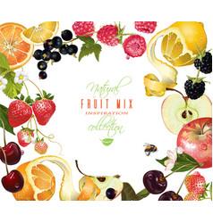 fruit mix banner vector image