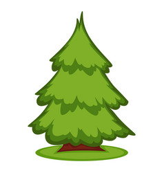 A pine in forest vector