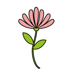 Beauiful garden flower icon vector