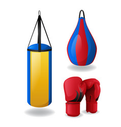 boxing equipment set isolated red gloves and vector image