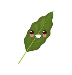 branch coffee leaf kawaii cartoon vector image