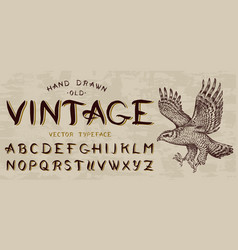 calligraphic vintage font capital letters bird vector image