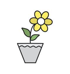 Crocus in flowerpot color icon vector
