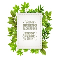 Decorative Frame With Spring Leaves vector image